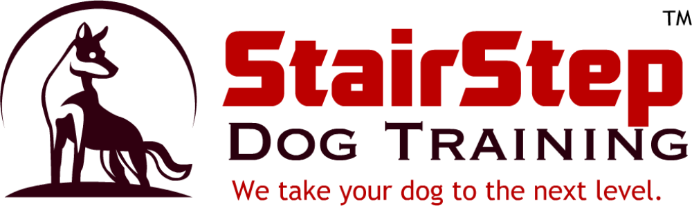 Dog Training in Port Saint Lucie, FL